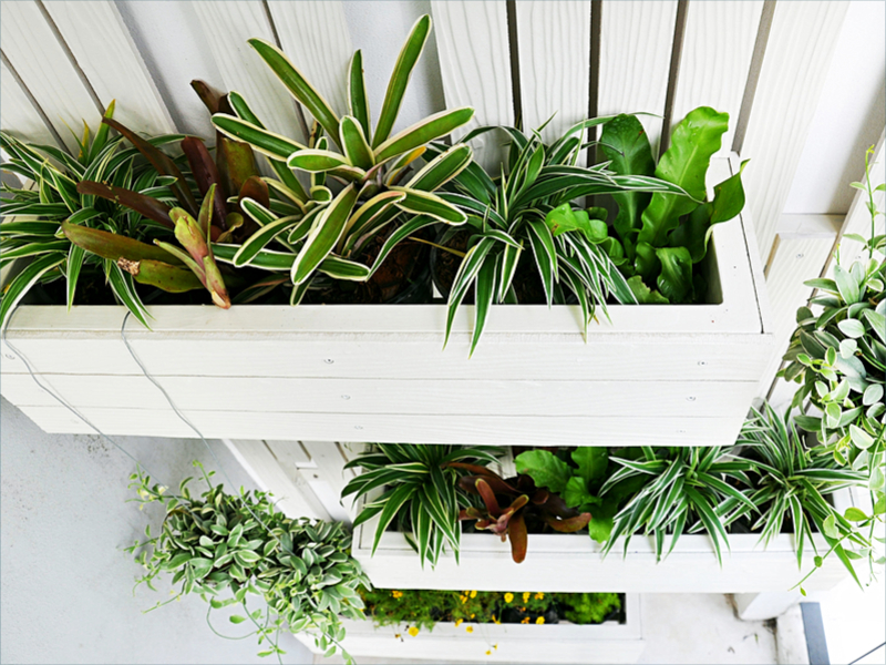 Using nature to pretty up your balcony decor this Spring